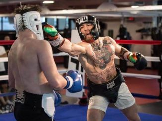 Conor McGregor Boxing Punch